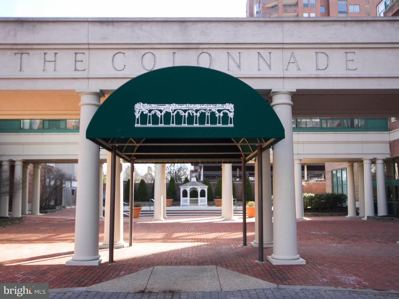 Condominium for Sale at 3801 Canterbury Rd #409 Baltimore, Maryland 21218 United States