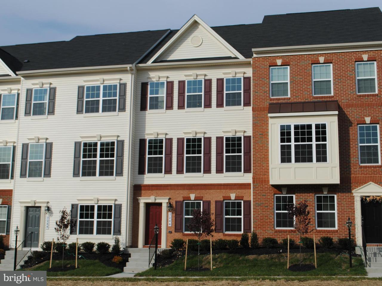 Other Residential for Rent at 7246 Brinley Way Hanover, Maryland 21076 United States