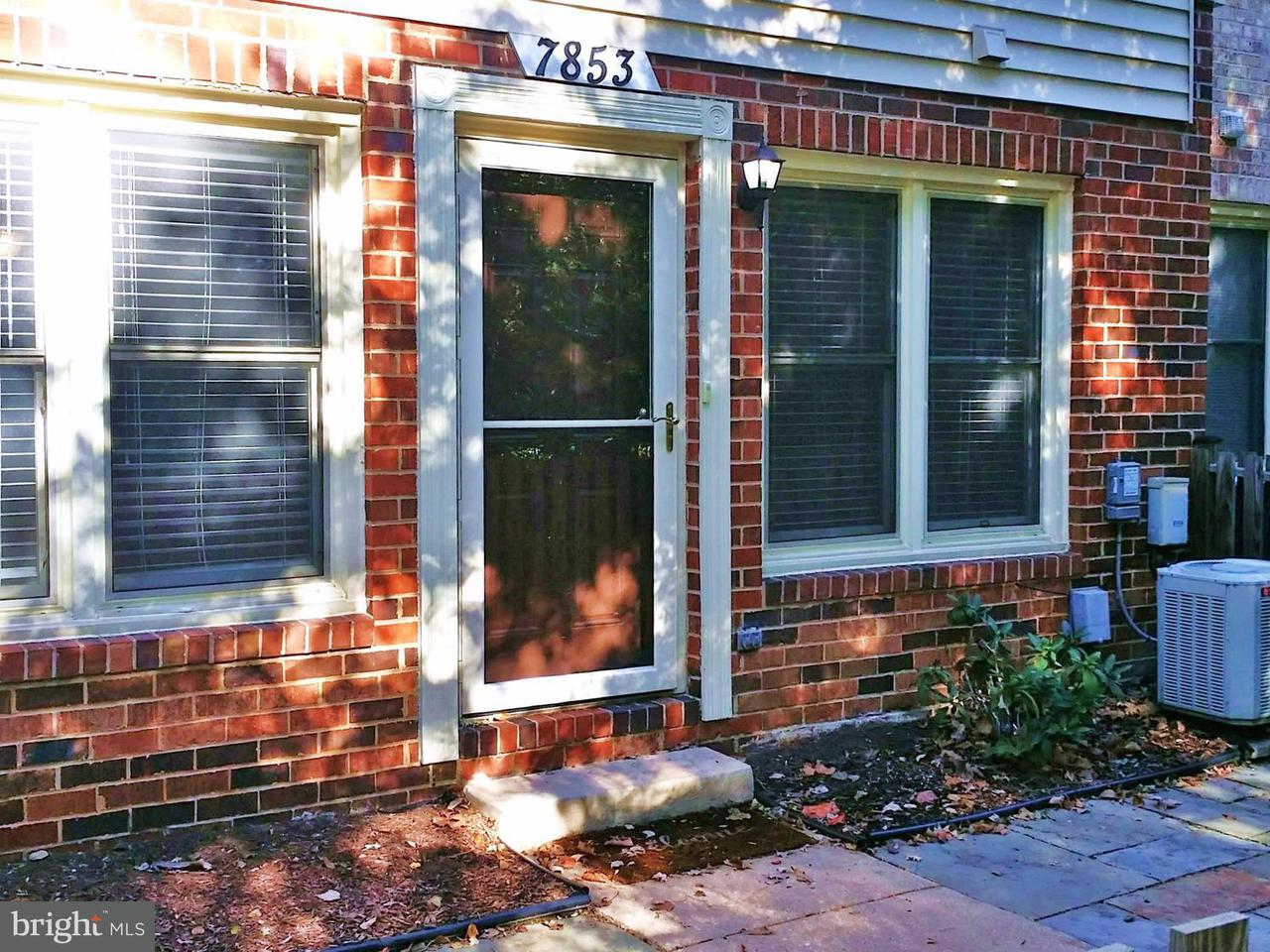Condominium for Rent at 7853 Coddle Harbor Ln #21 Potomac, Maryland 20854 United States