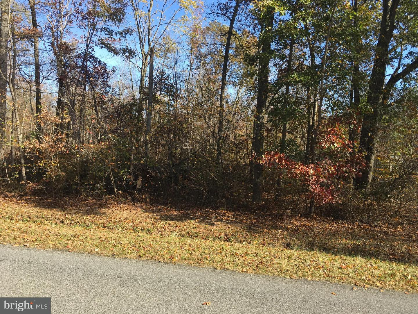 Land for Sale at Big Woods Rd Barclay, Maryland 21607 United States