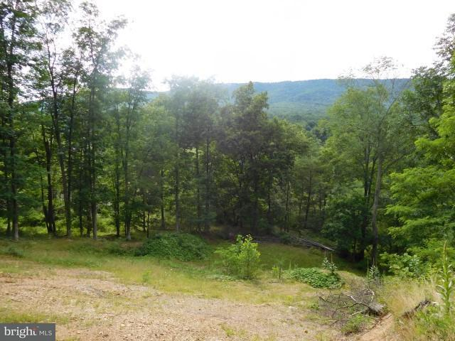 Land for Sale at Route 23/10 Trout Run Rd Wardensville, West Virginia 26851 United States