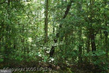 Land for Sale at Dahlgren Road King George, Virginia 22485 United States