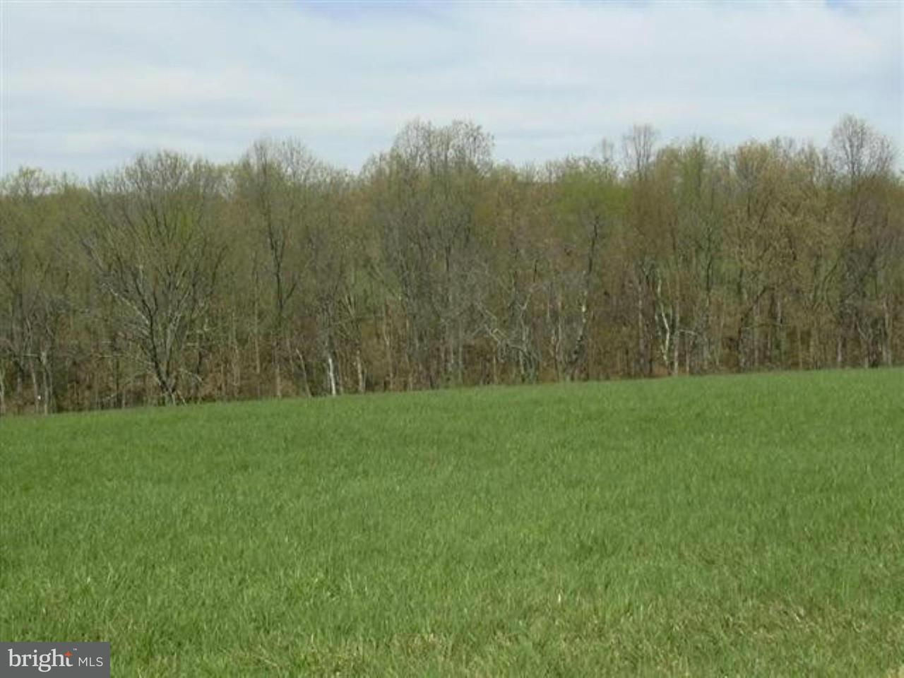 Land for Sale at 58 Sleepy Knolls Shanks, West Virginia 26761 United States