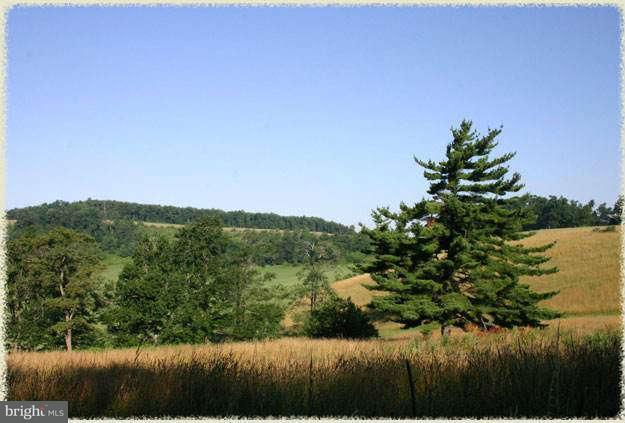 Land for Sale at Lot #7 Golden Meadow Ln Oakland, Maryland 21550 United States