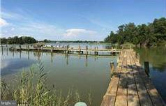 Land for Sale at Deep Harbour Farm Rd Sherwood, Maryland 21665 United States