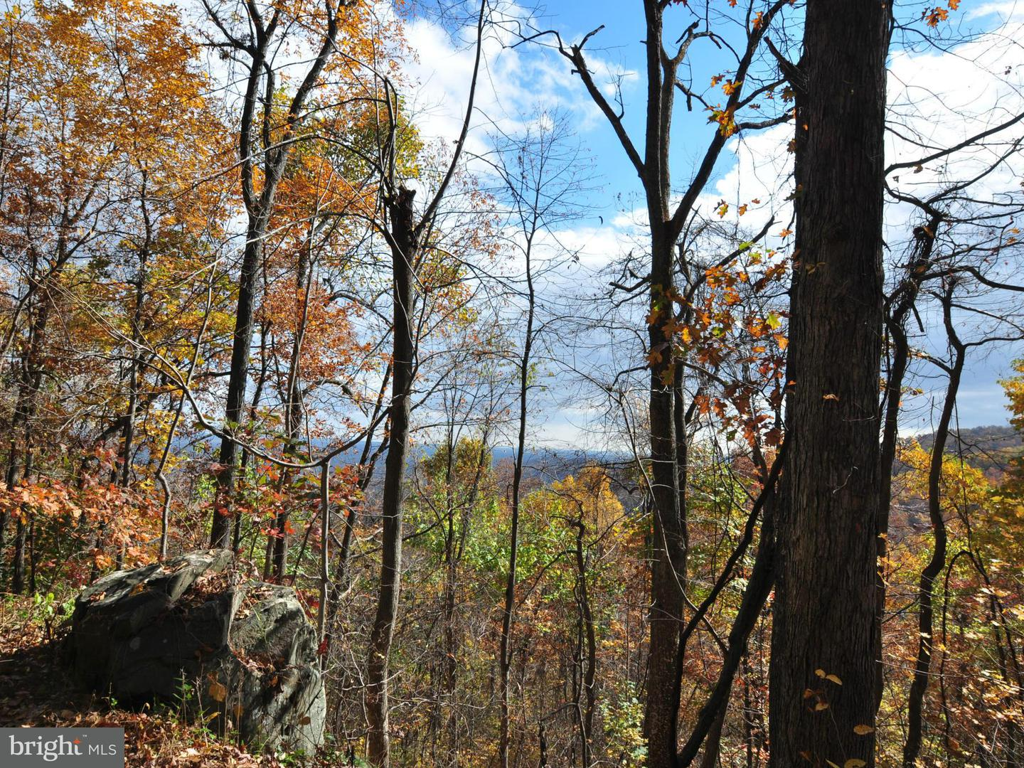 Land for Sale at 60 Rattlesnake Hollow Huntly, Virginia 22640 United States