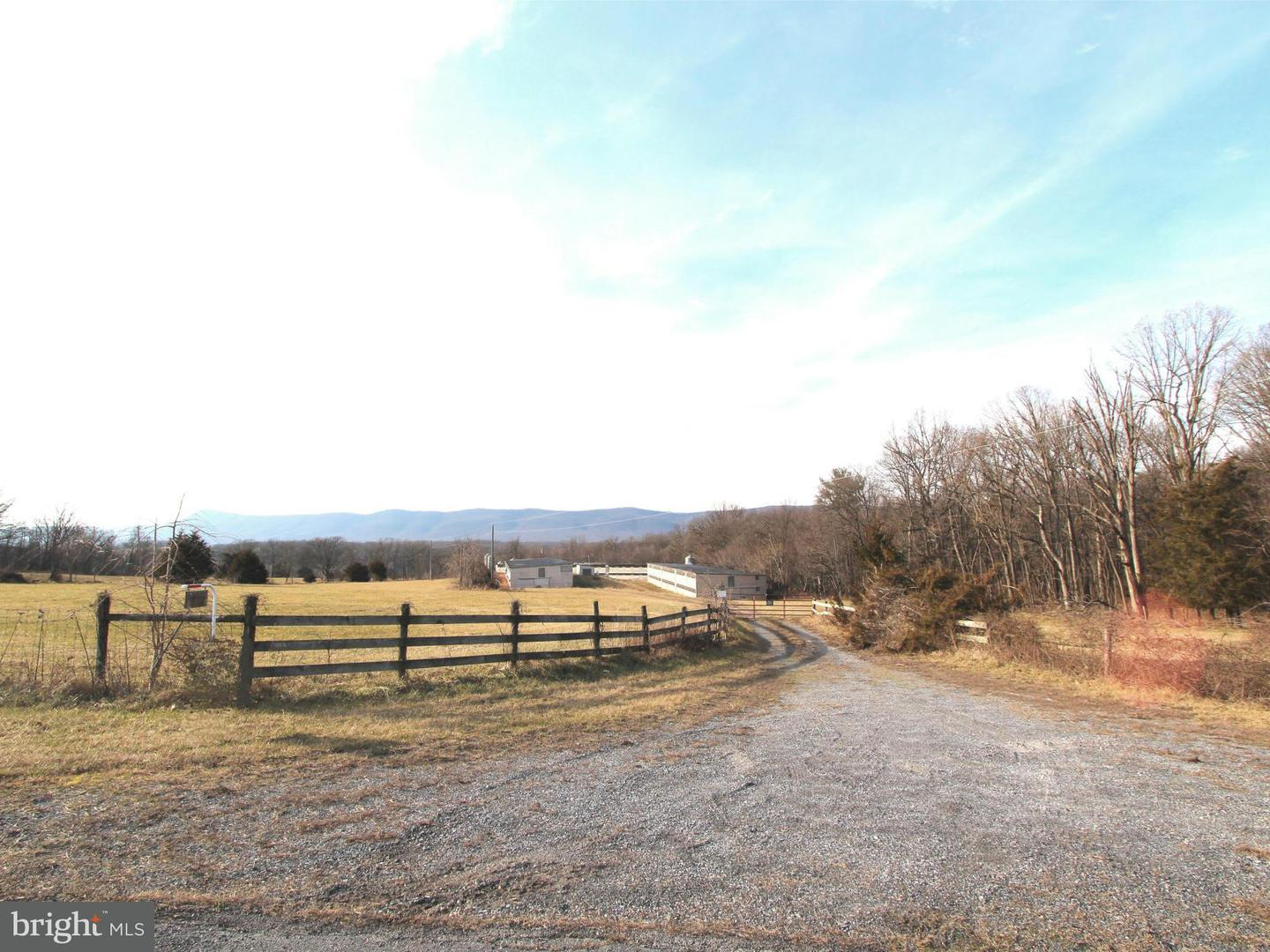 Land for Sale at 0 Beahm Ln Rileyville, Virginia 22650 United States