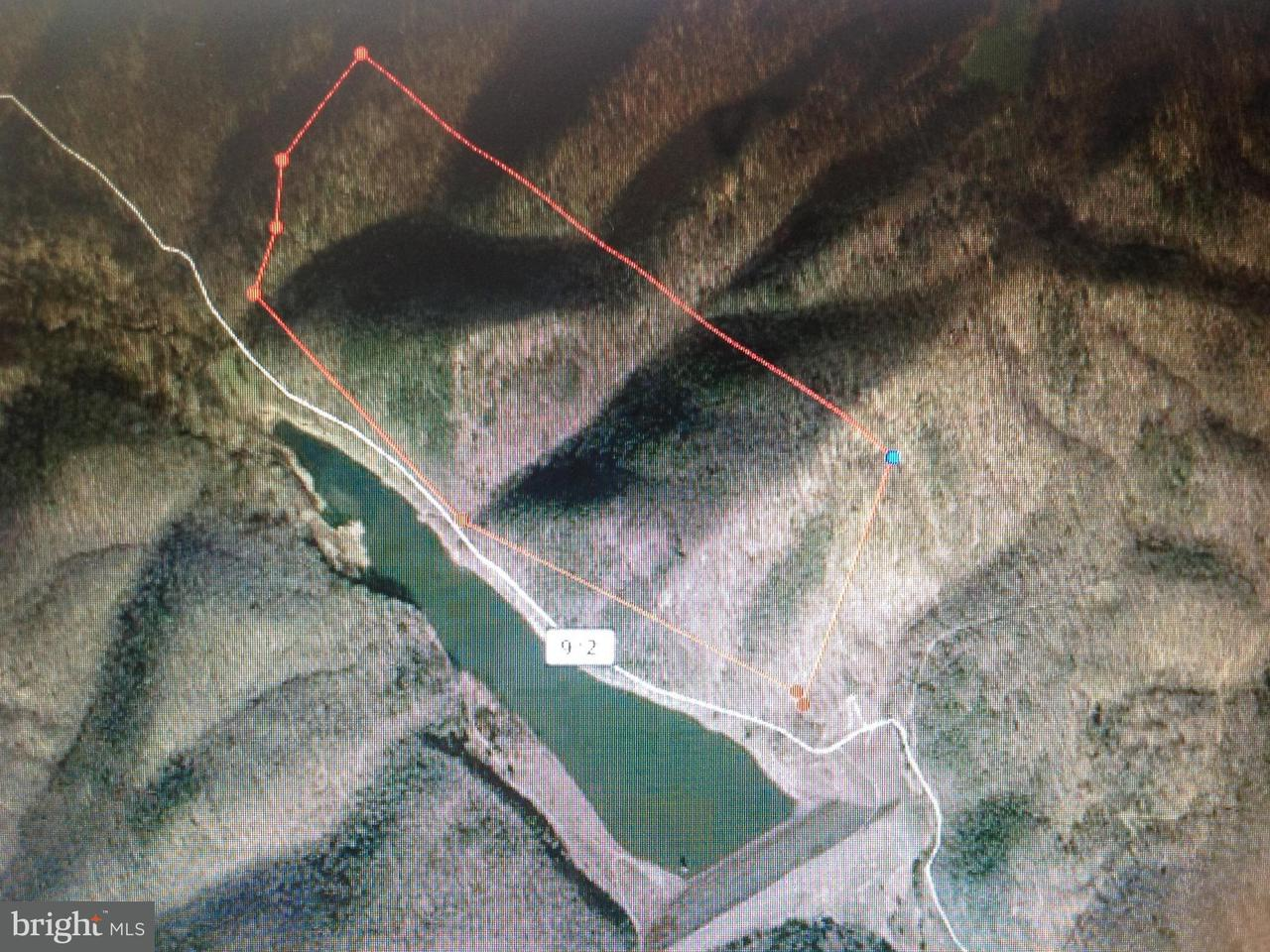 Land for Sale at Mikes Run Burlington, West Virginia 26710 United States