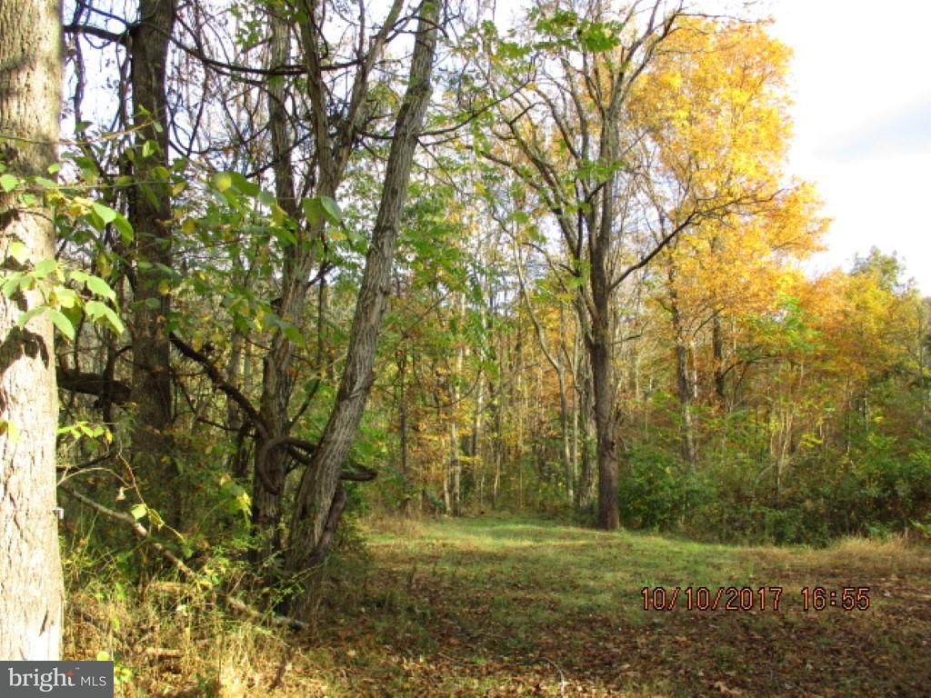 Land for Sale at Carolina Dr Rio, West Virginia 26755 United States