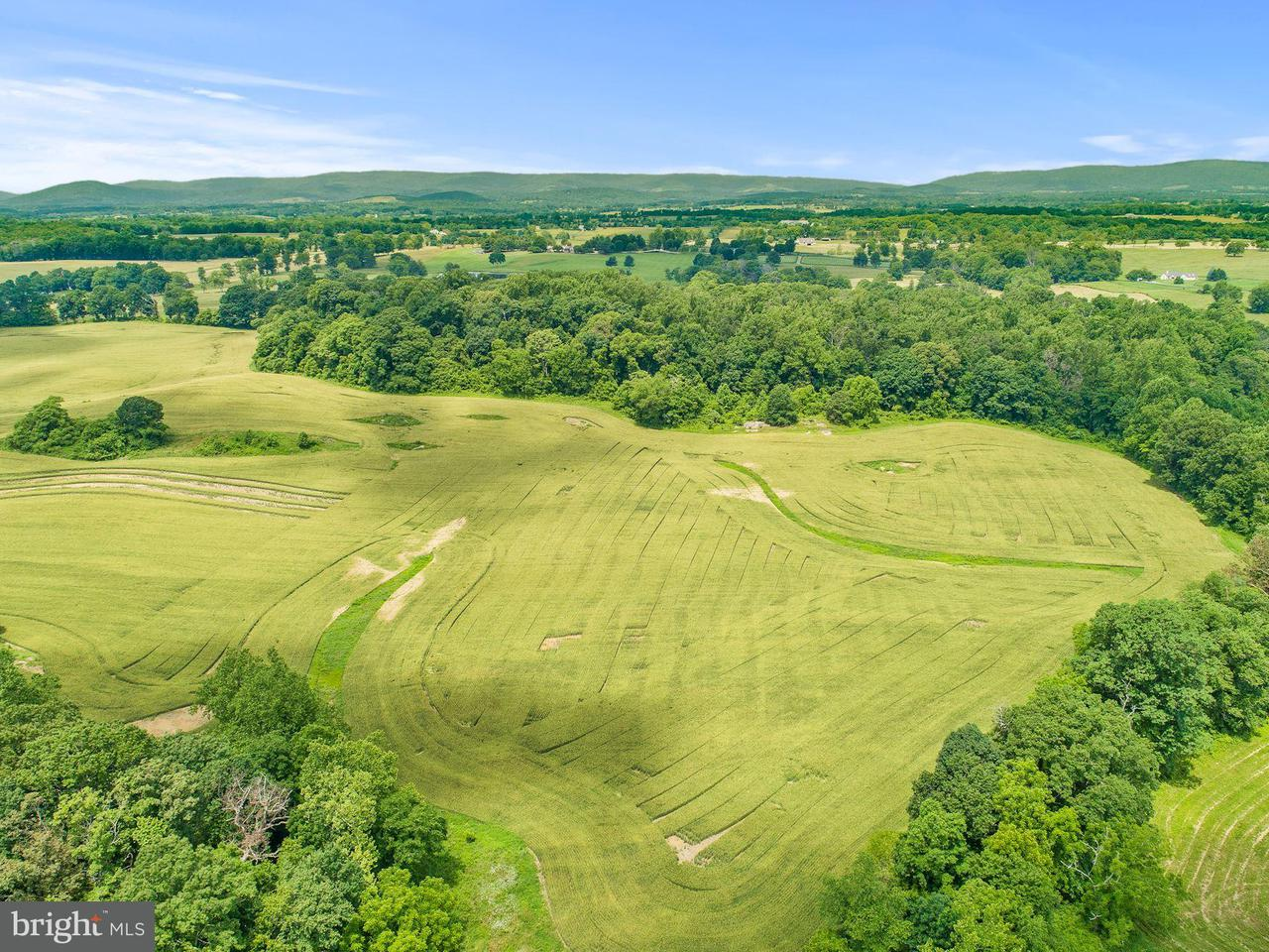 Land for Sale at Five Points Road Five Points Road The Plains, Virginia 20198 United States