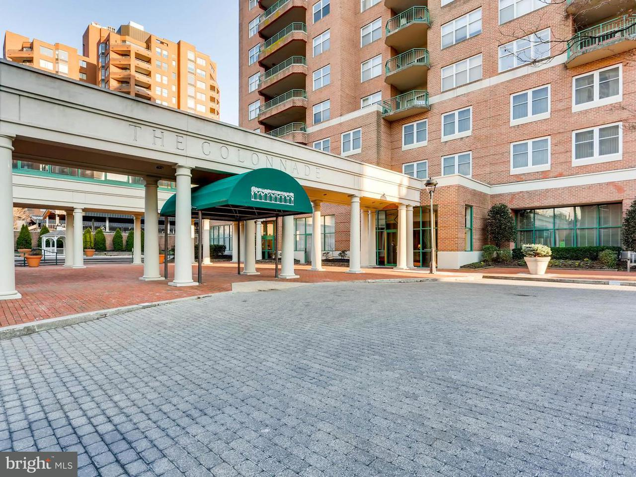 Condominium for Sale at 3801 Canterbury Rd #509 Baltimore, Maryland 21218 United States