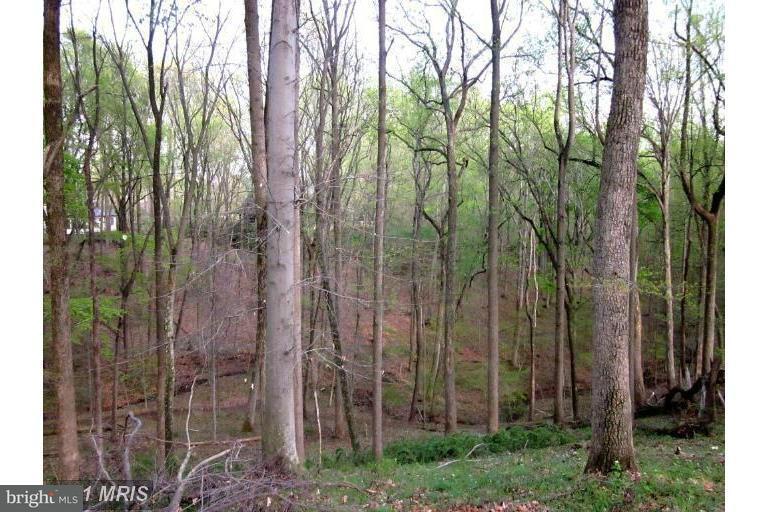 Terrain pour l Vente à 12017 Evening Ride Drive 12017 Evening Ride Drive Potomac, Maryland 20854 États-Unis