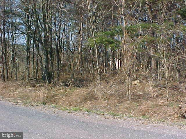 Land for Sale at Condaway Rawlings, Maryland 21557 United States