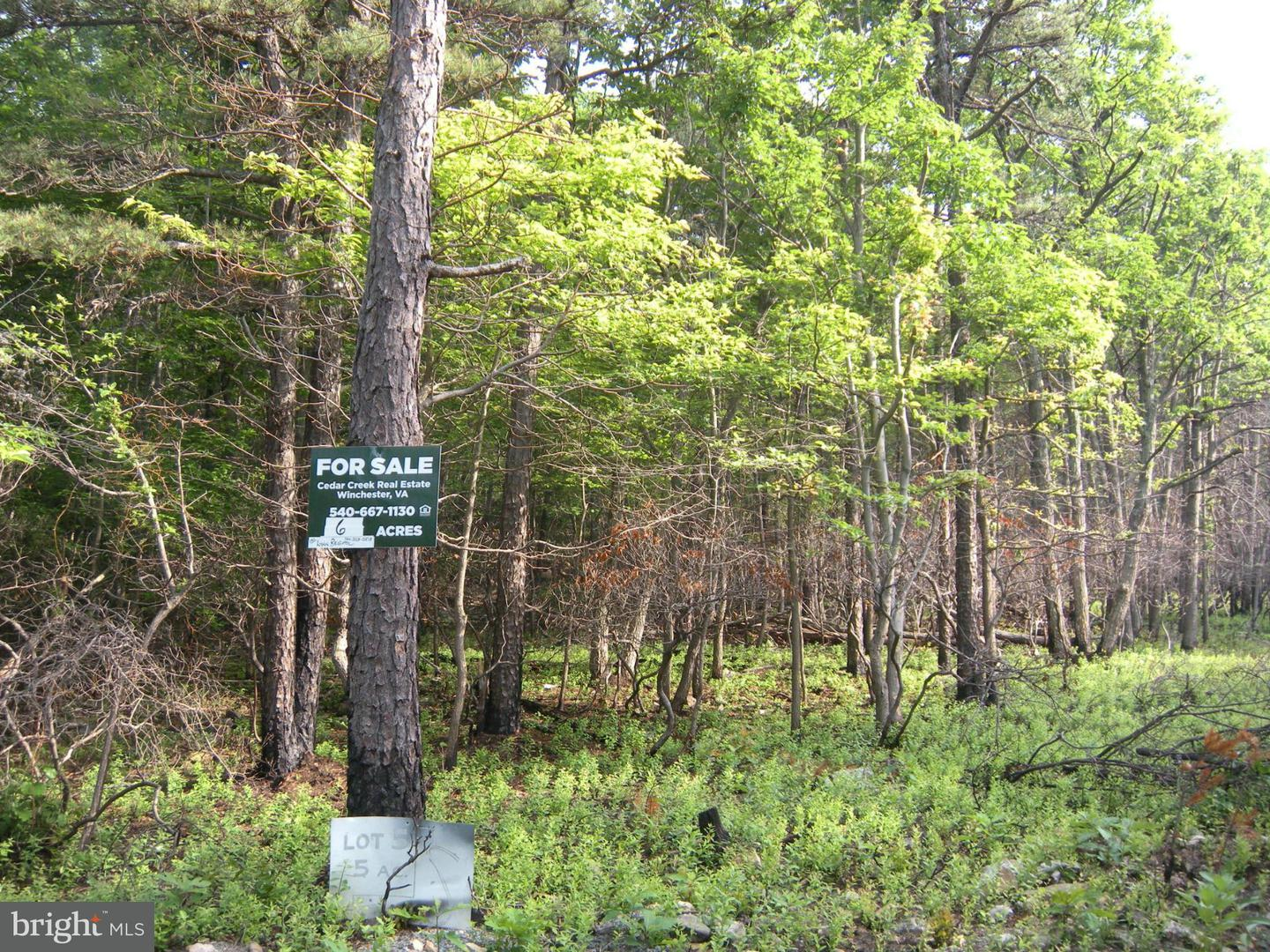 Additional photo for property listing at Lot Trails End Dr  Star Tannery, Virginia 22654 United States