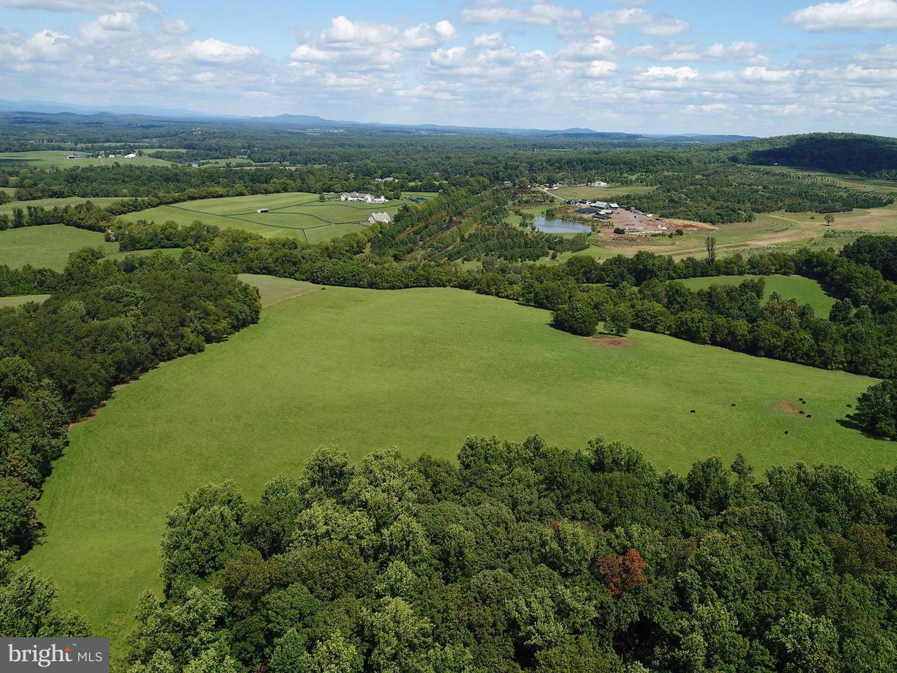 Land for Sale at 10072 Elijah Craig Rd Gordonsville, Virginia 22942 United States