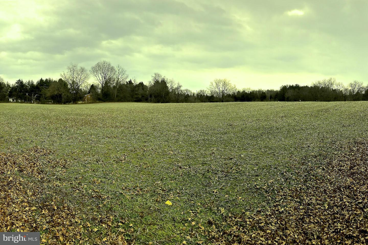 Additional photo for property listing at 0 Marsh Road  Bealeton, Virginia 22712 United States
