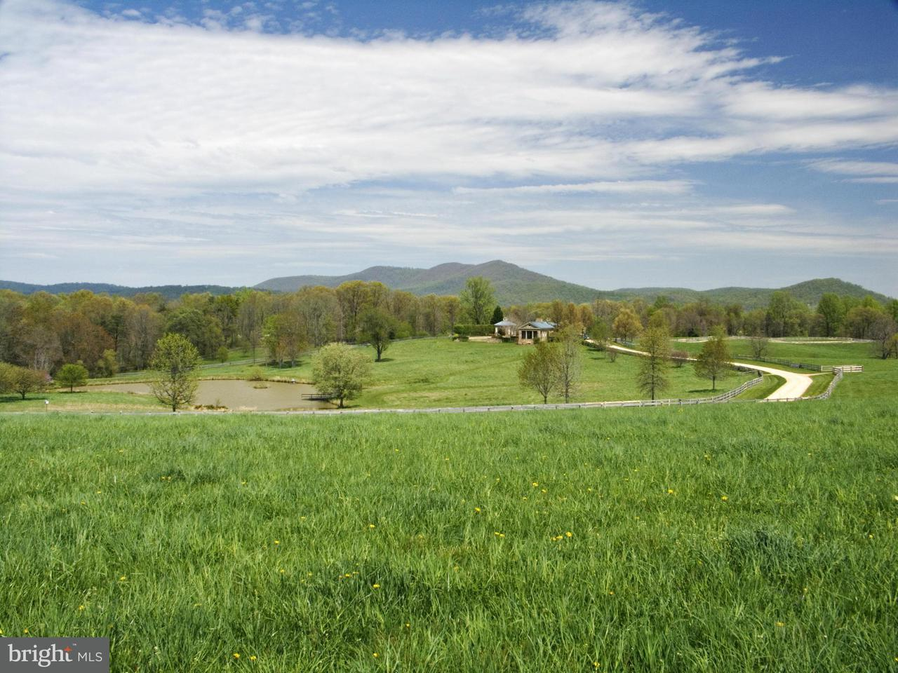 Farm for Sale at 1954 North Poes Rd Flint Hill, Virginia 22627 United States