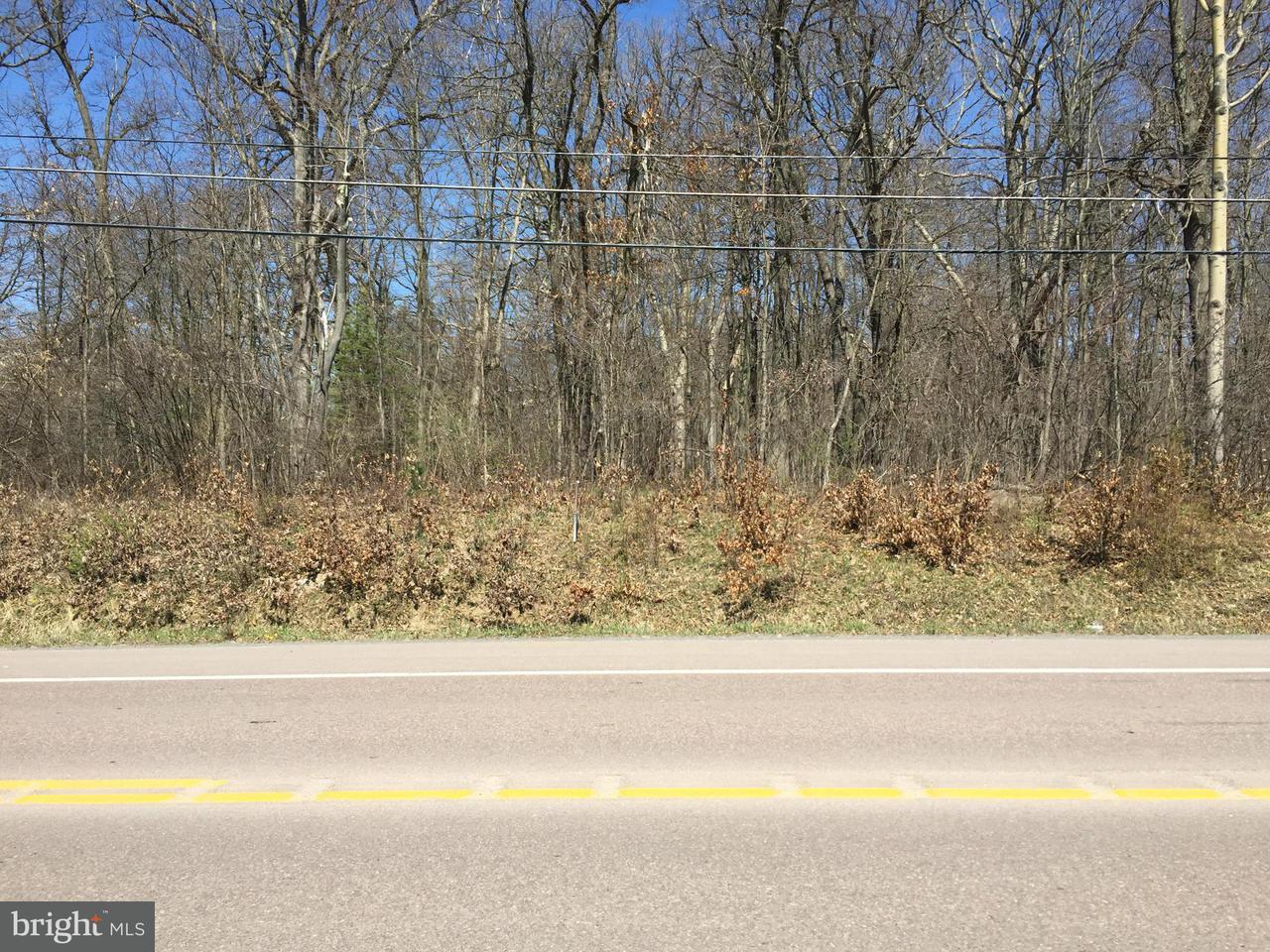 Land for Sale at Rt 135 N Mt Lake Mountain Lake Park, Maryland 21550 United States