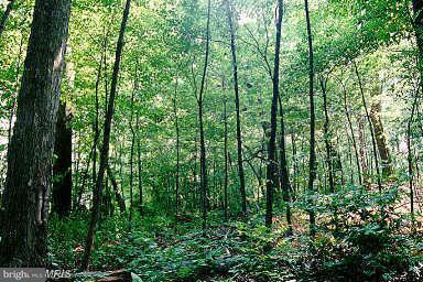 Land for Sale at 6733 High Park Cir New Market, Maryland 21774 United States