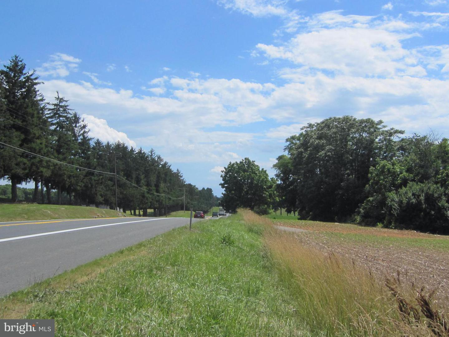 Land for Sale at 0 Sharpsburg Pike Fairplay, Maryland 21733 United States