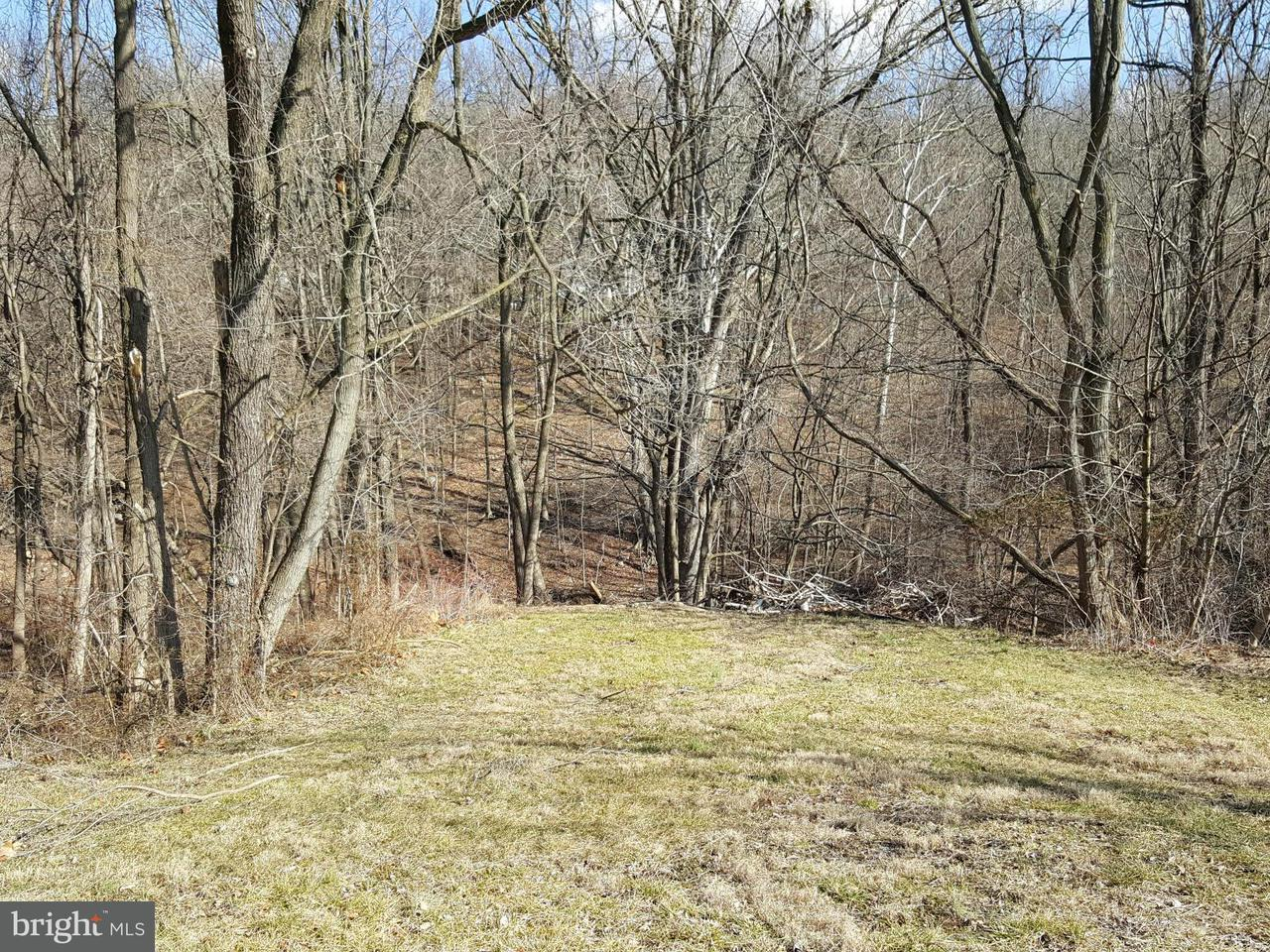 Land voor Verkoop een t Winchester Rr Road Winchester Rr Road Lavale, Maryland 21502 Verenigde Staten