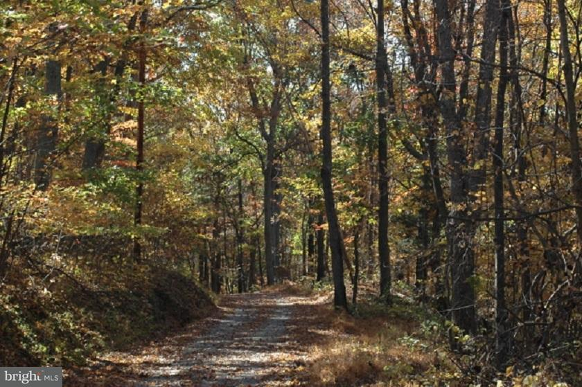 Land for Sale at 483 Red Oak Mountain Rd Woodville, Virginia 22749 United States