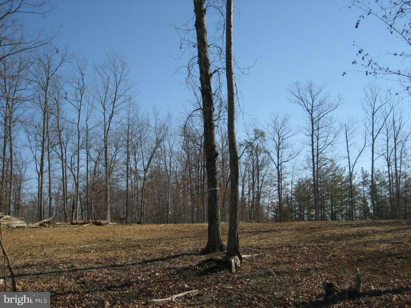 Land for Sale at Mountain Track Rd Orange, Virginia 22960 United States