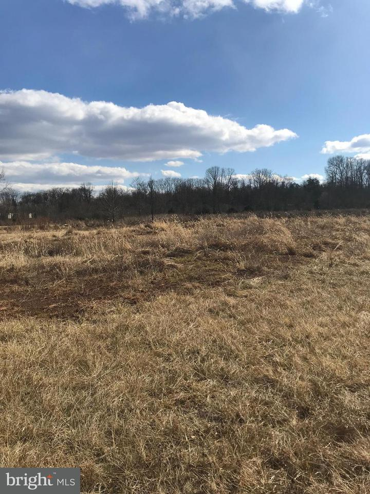 Commercial for Sale at 16154 Brandy 16154 Brandy Culpeper, Virginia 22701 United States