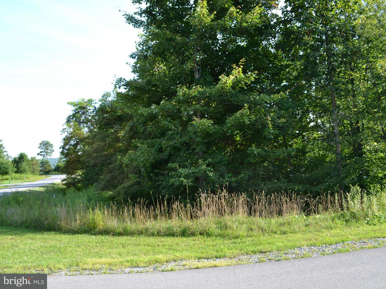 Additional photo for property listing at 61 Westward Way  Mc Henry, Maryland 21541 United States