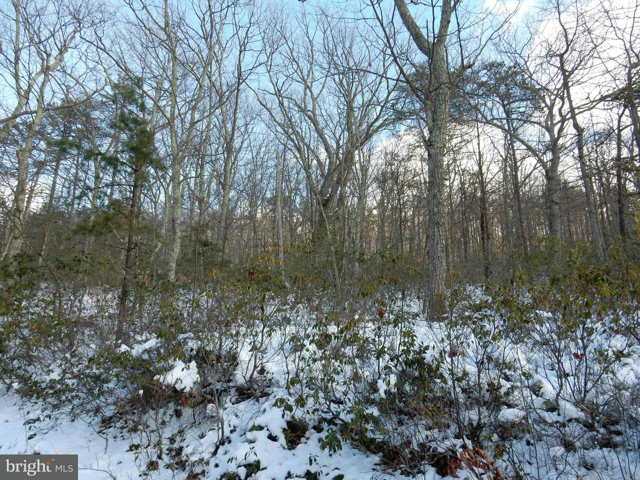 Additional photo for property listing at 30 Virginia Pine  Wardensville, West Virginia 26851 United States