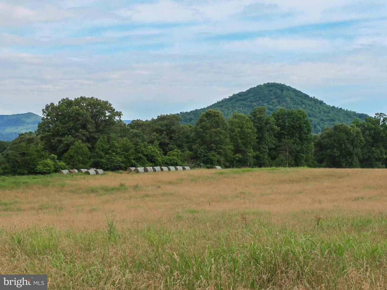 Land for Sale at Allen Farm Lane Allen Farm Lane Earlysville, Virginia 22936 United States