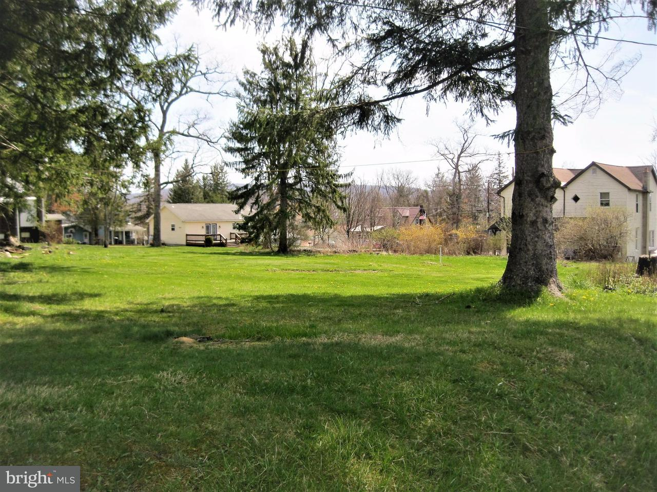 Land for Sale at 505 L St Mountain Lake Park, Maryland 21550 United States