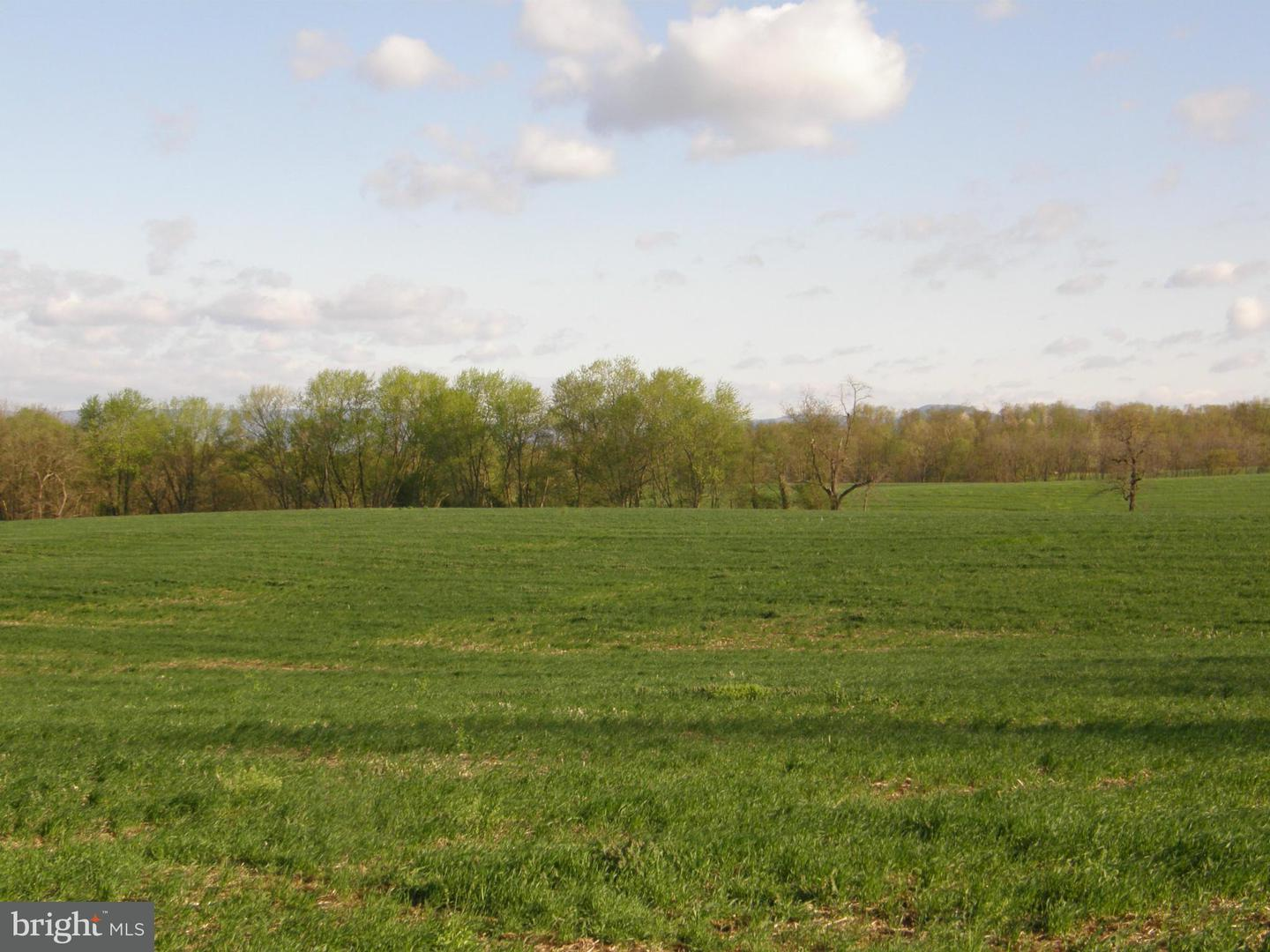 Land for Sale at Cool Hollow Road Greencastle, Pennsylvania 17225 United States