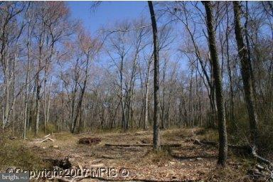 Land for Sale at Red Hill Rd E Conowingo, Maryland 21918 United States