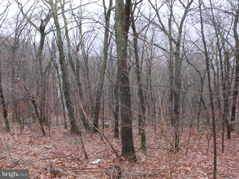 Land for Sale at 114lot Timberlake Drive James Creek, Pennsylvania 16657 United States