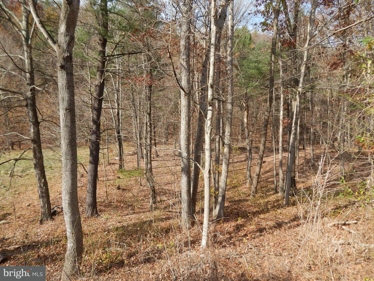 Additional photo for property listing at 12000 Cacapon Road 12000 Cacapon Road Great Cacapon, West Virginia 25422 Estados Unidos