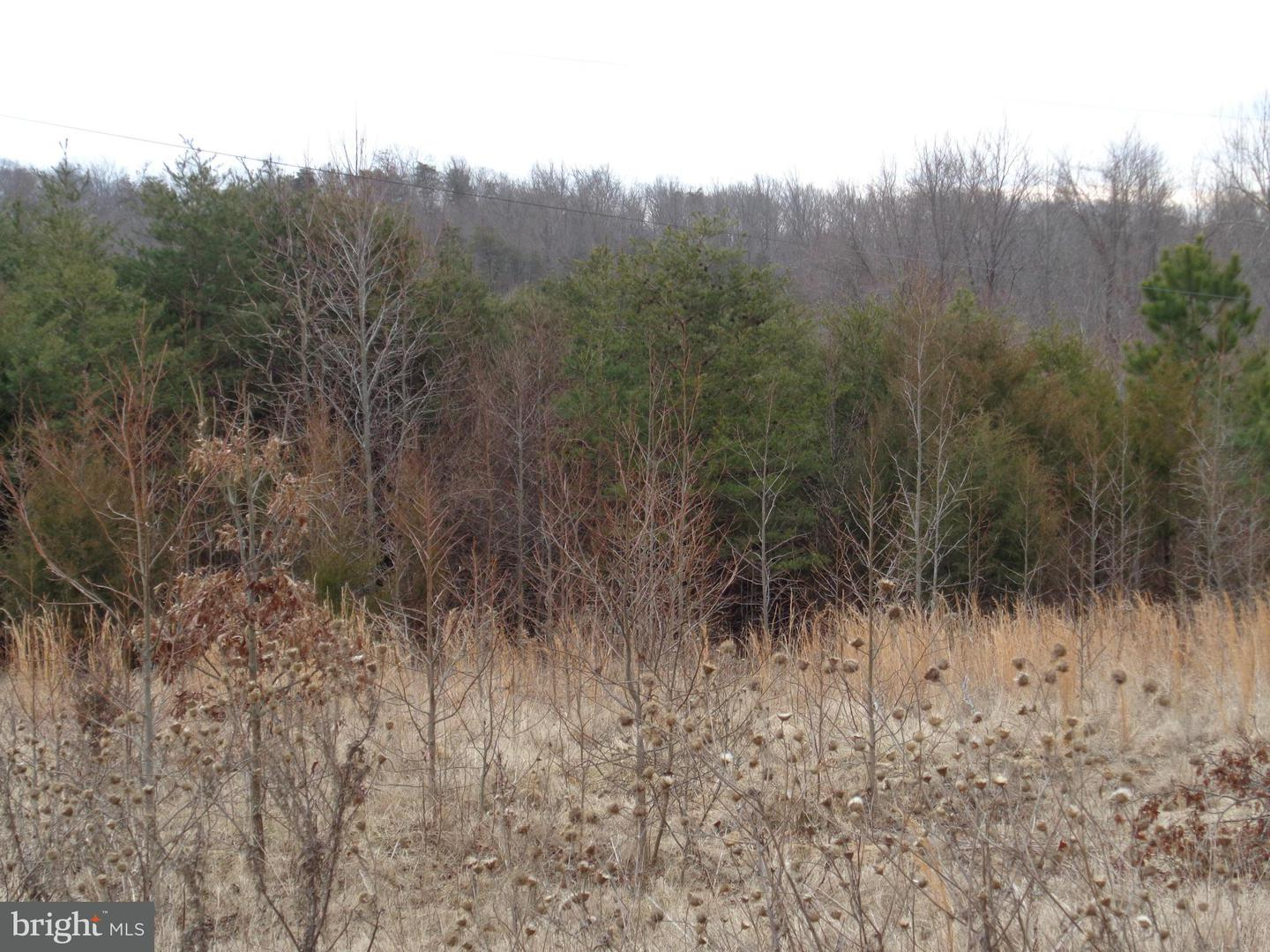 Land for Sale at None Stafford, Virginia 22554 United States
