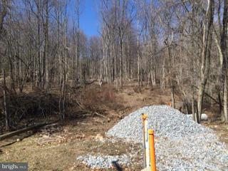 Land for Sale at 3020 Harpers Ferry Rd Sharpsburg, Maryland 21782 United States