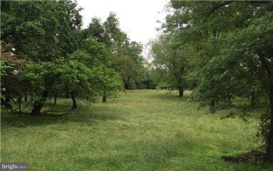 Land for Sale at 101 Spearmint Lane 101 Spearmint Lane Silver Spring, Maryland 20905 United States