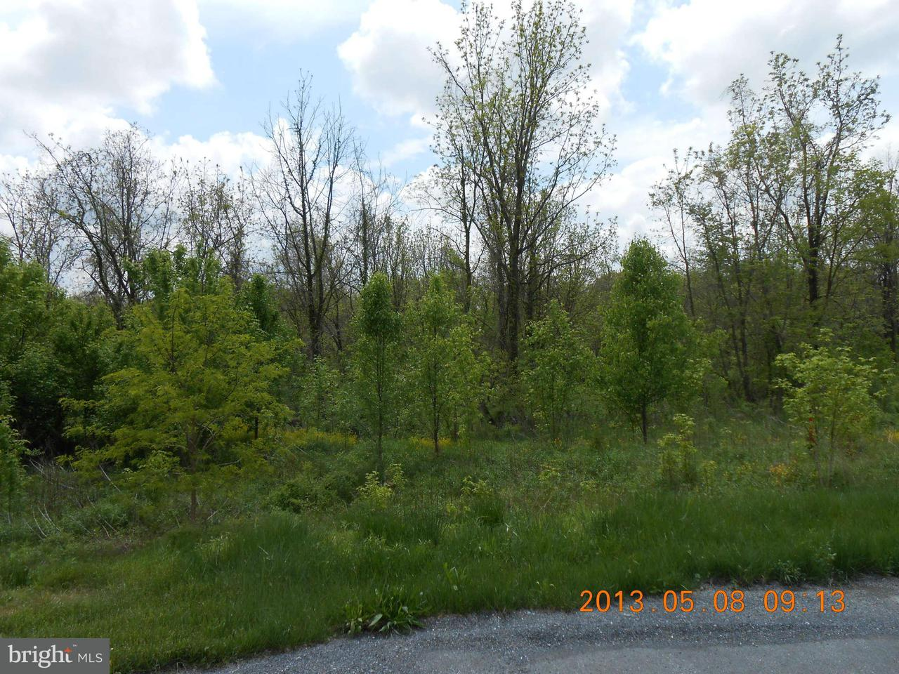 Additional photo for property listing at Lot 25 Apple Jack Ct  Mercersburg, Pennsylvania 17236 United States