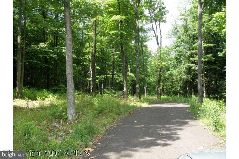Additional photo for property listing at 32 Lehman Ln  Oakland, Maryland 21550 United States