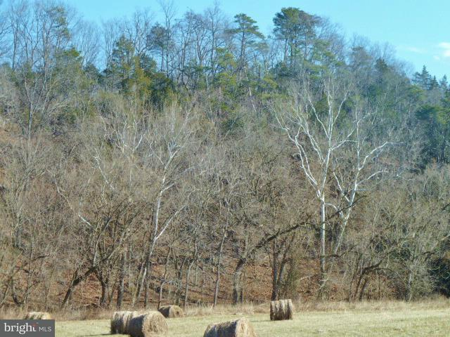 Additional photo for property listing at Gafia Lodge Rd  Middletown, Virginia 22645 United States