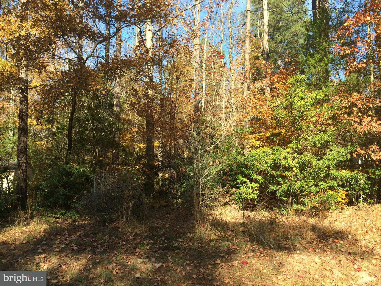 Additional photo for property listing at Monterey  Ruther Glen, Virginia 22546 United States