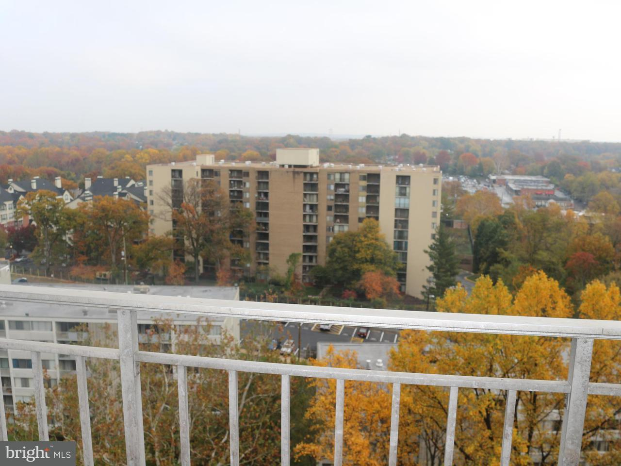 Condominium for Rent at 1836 Metzerott Rd #1507 Adelphi, Maryland 20783 United States