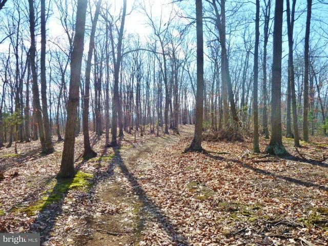 Additional photo for property listing at Lot 33 Comforter Ln  Middletown, Virginia 22645 United States