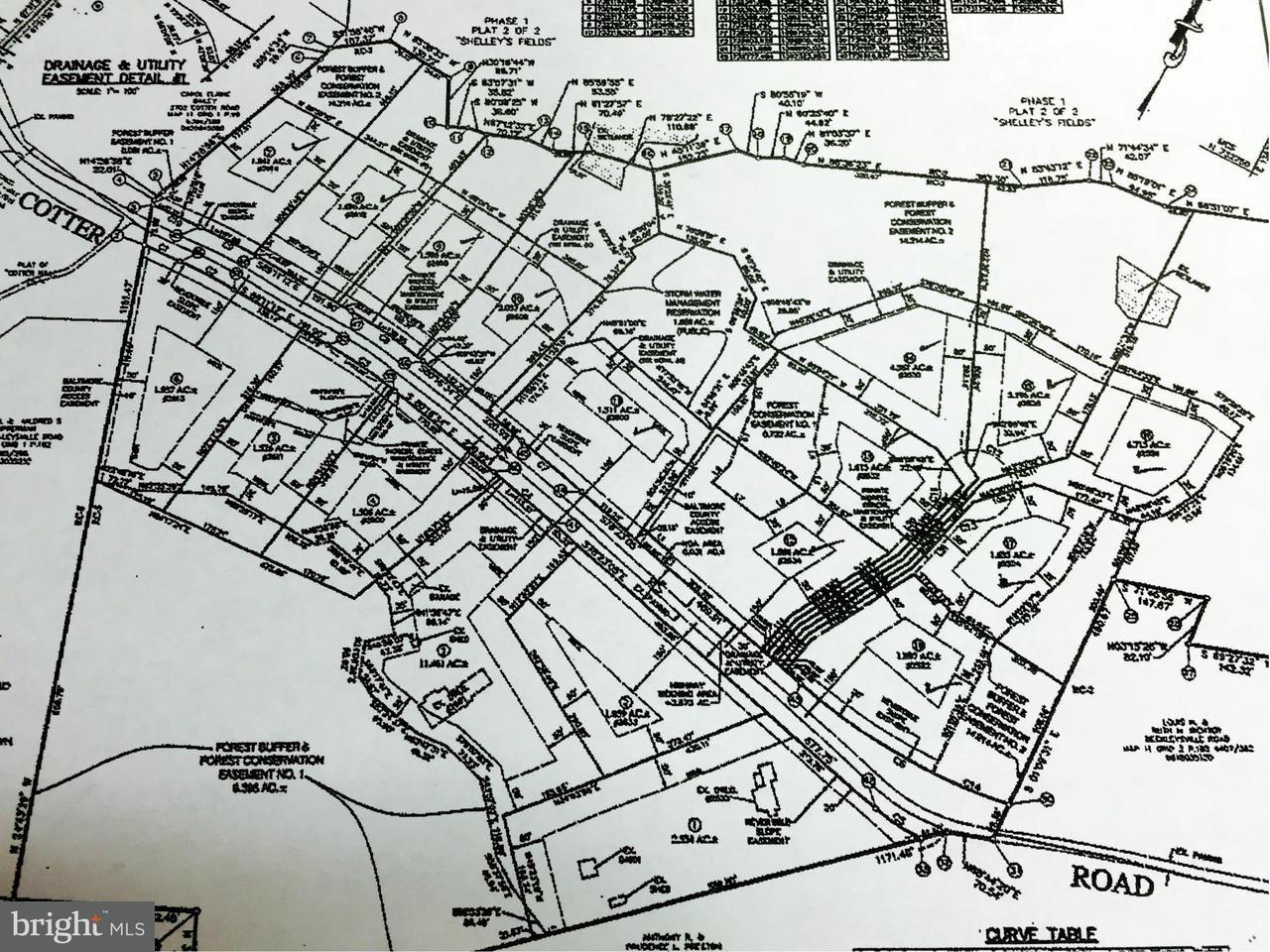 土地,用地 为 销售 在 2510 Cotter Road 2510 Cotter Road Millers, 马里兰州 21102 美国
