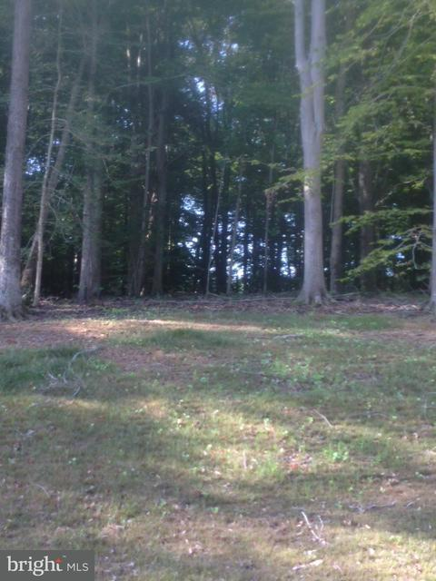 Land for Sale at 14600 Gallant Ln Waldorf, Maryland 20601 United States