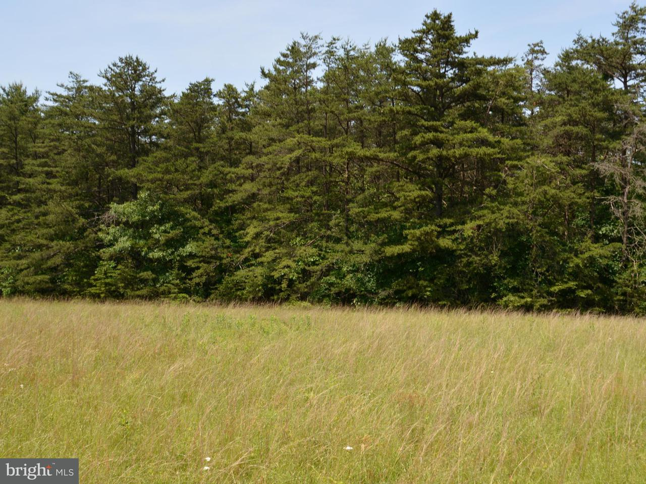 Land for Sale at Lot 12 Green Mountain Road Clearville, Pennsylvania 15535 United States