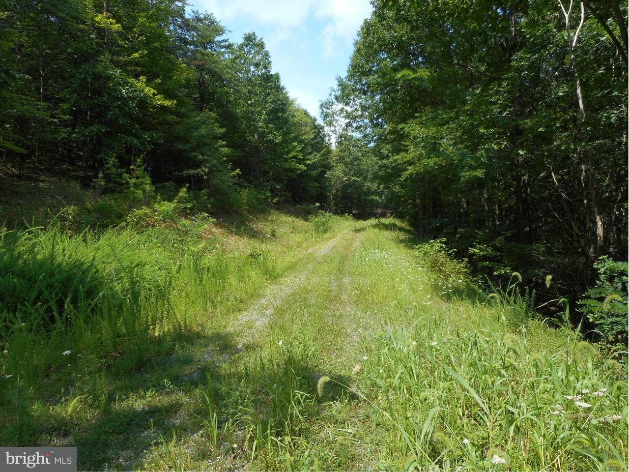Land for Sale at Off Rt 28 /pPssin wWnd hH Springfield, West Virginia 26763 United States