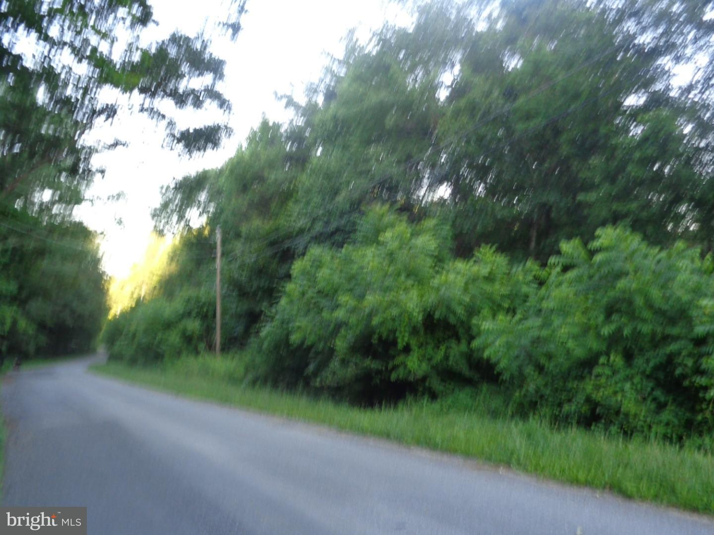 Land for Sale at Skyline Dr Orrstown, Pennsylvania 17244 United States